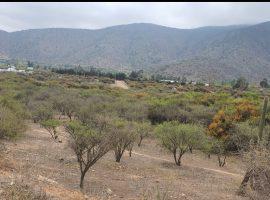 Curacavi, venta hermosa parcela bosques de miraflores